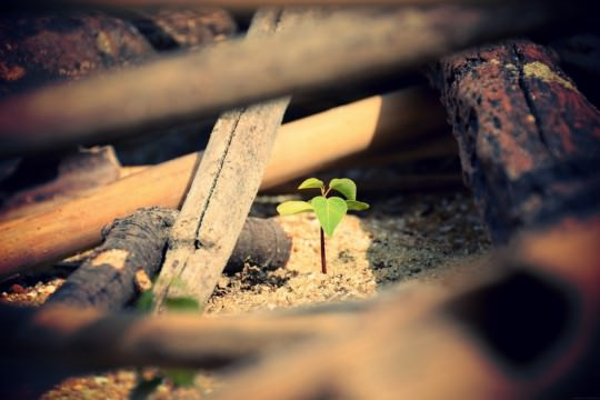 不況こそライバル企業に打ち勝つチャンス