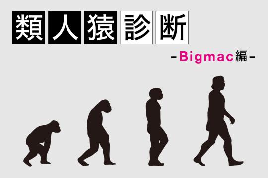 類人猿診断ーBigmac編ー