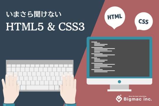 今更聞けない!HTML5・CSS3