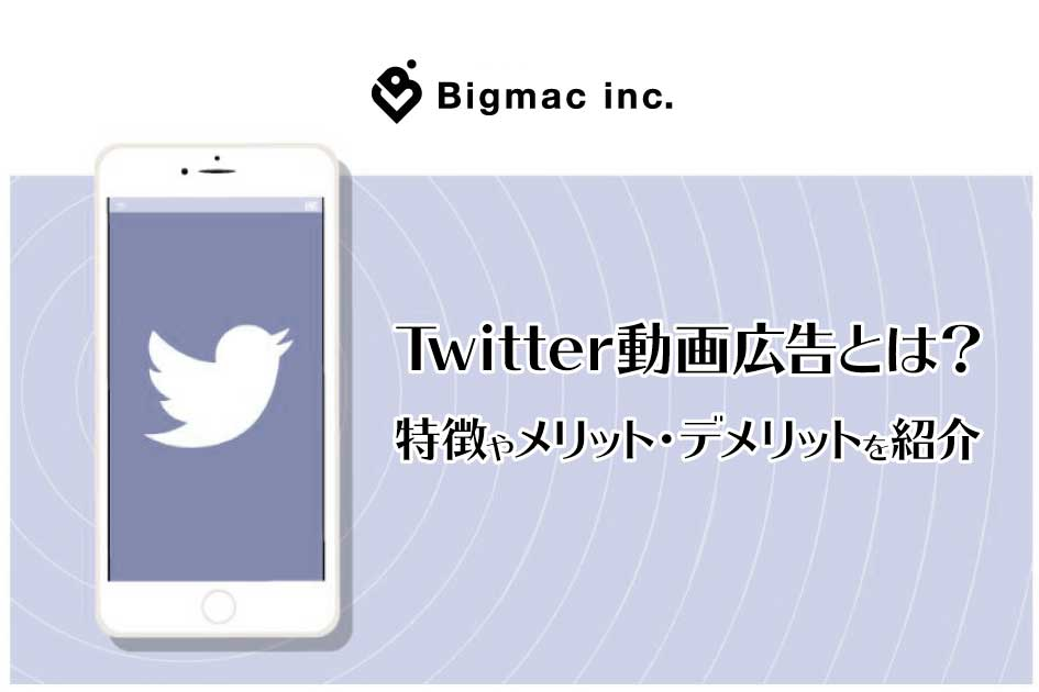 Twitter動画広告とは?特徴やメリット・デメリットを紹介