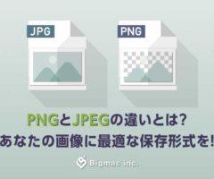PNGとJPEGの違いとは?あなたの画像に最適な保存形式を!
